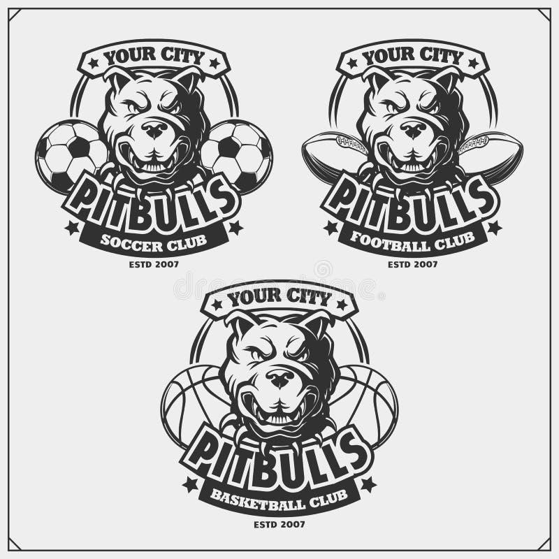 Basquetebol, futebol e logotipos e etiquetas do futebol Emblemas do clube de esporte com pitbull ilustração do vetor