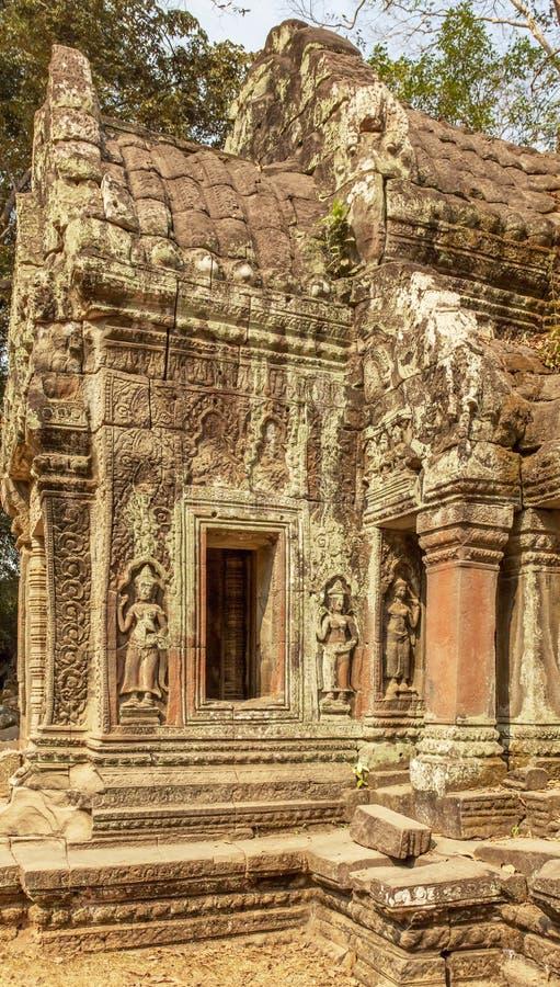 Basrelief på stenen, forntida tempel för Ta Prohm, Angkor Thom, Siem Reap, Cambodja royaltyfri fotografi