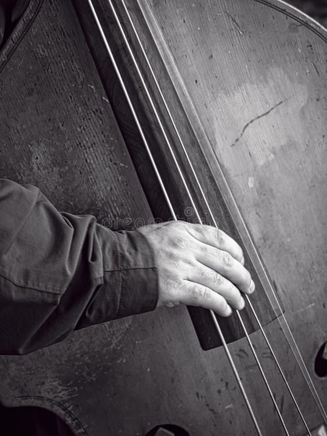Bass Fiddle fotografia de stock