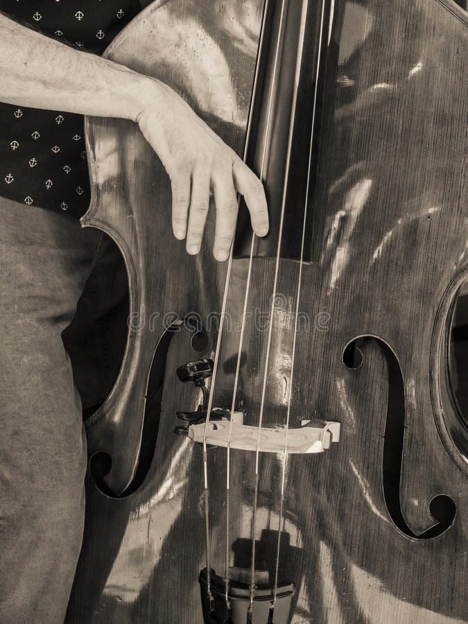 Bass Fiddle Strumming stockfoto