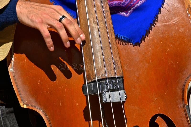 Bass-Instrument lizenzfreies stockfoto