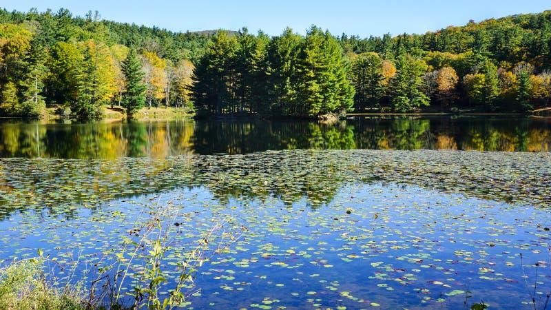 Bass Lake Moses Cone Park Noord-Carolina stock afbeeldingen
