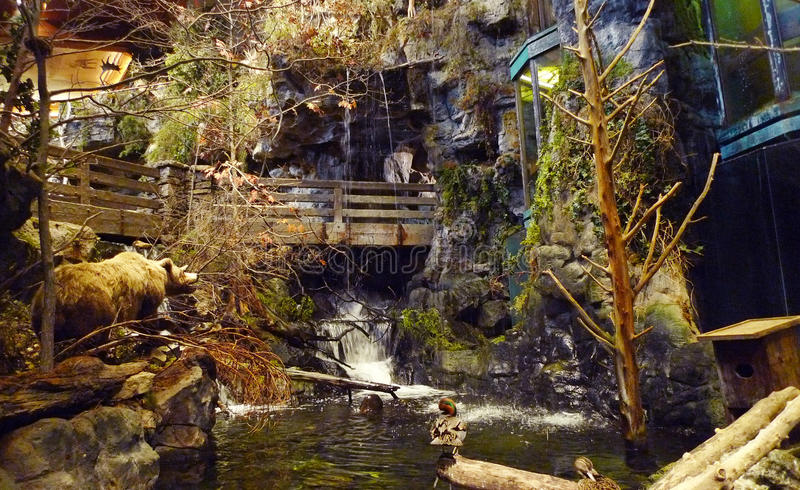 Bass Pro Shops, affichage de Springfield, Missouri photos libres de droits