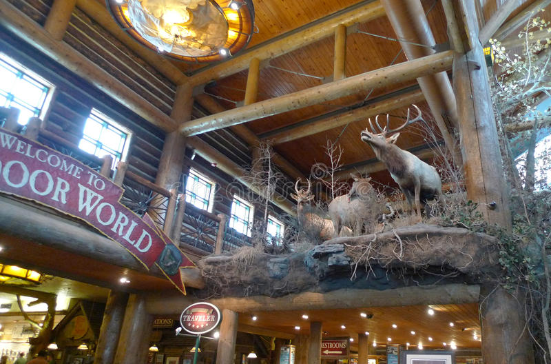 Bass Pro Shops, empaillage de Springfield, Missouri photos libres de droits