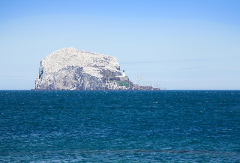 Download The Bass Rock stock photo. Image of high, reserve, unusual - 12012644