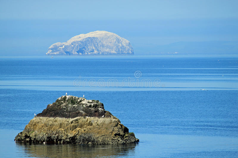 Bass Rock, Firth of Forth, from Dunbar royalty free stock images
