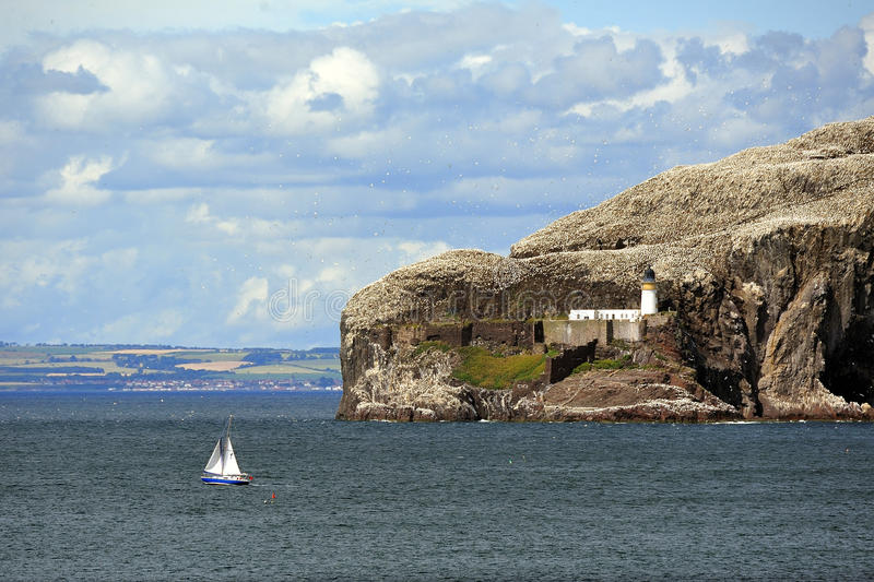 Bass rock sailboat, Scotland royalty free stock photo