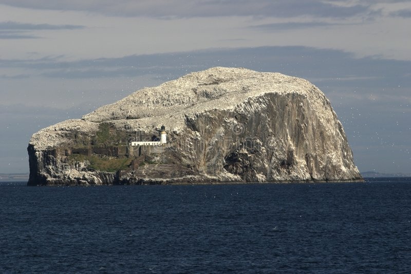 The Bass Rock, Scotland stock photo