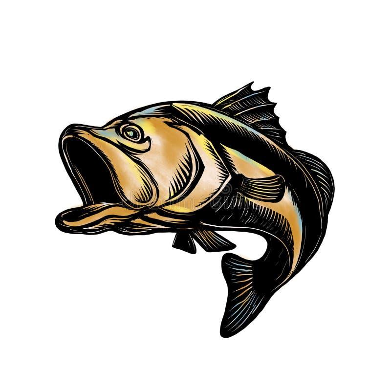 Bass Scratchboard bocazas stock de ilustración
