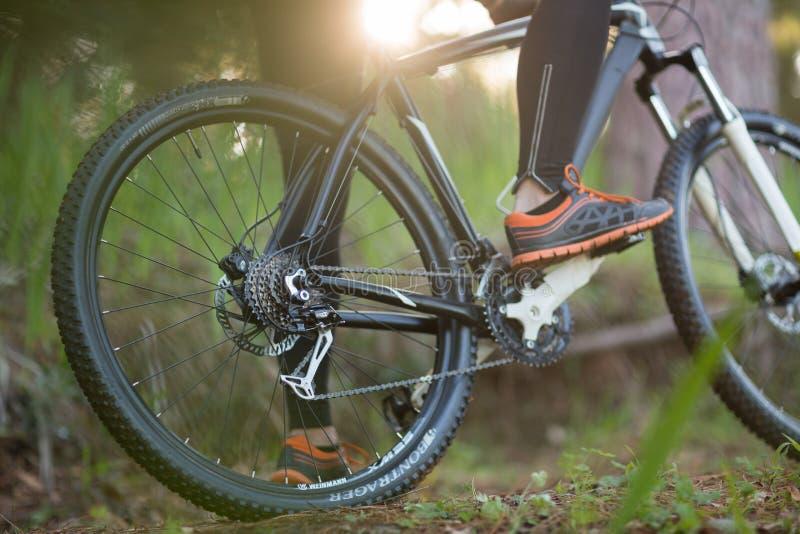 Basse section du cycliste masculin avec le vélo de montagne photos libres de droits