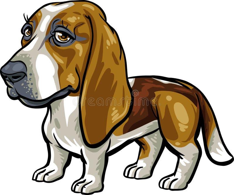 basset разводит гончую собаки иллюстрация вектора