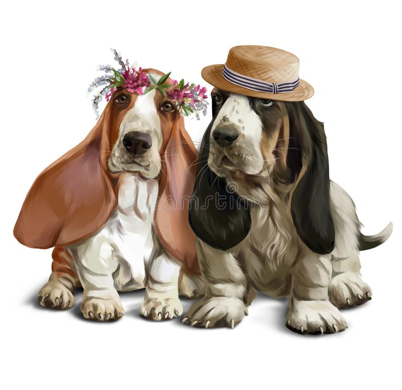 Bassethounds sur un dessin d'aquarelle de promenade illustration de vecteur