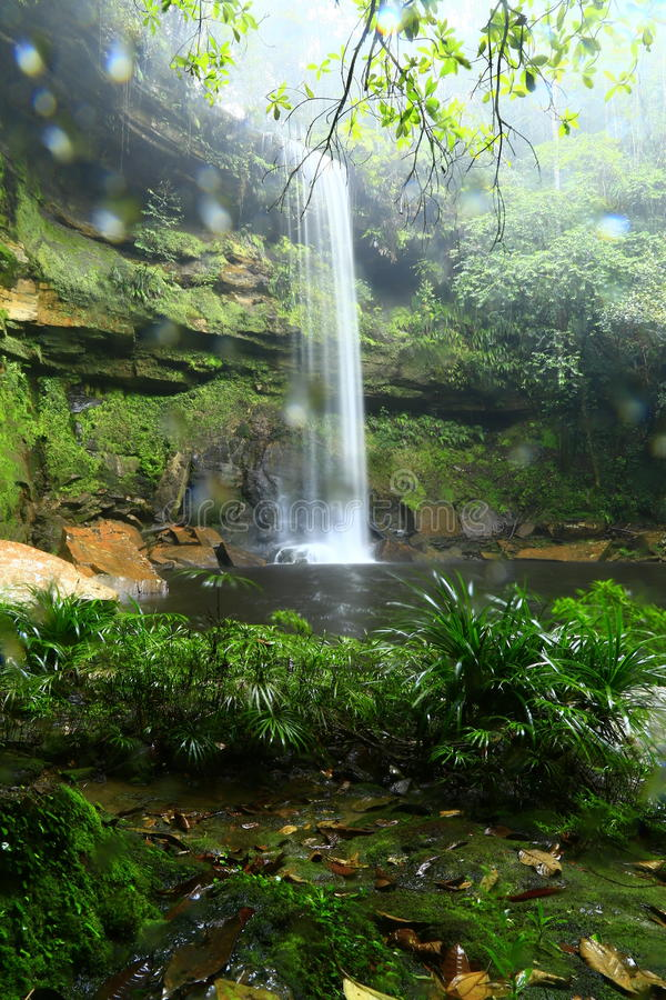 Bassin de maliu de cascade de panorama photo libre de droits