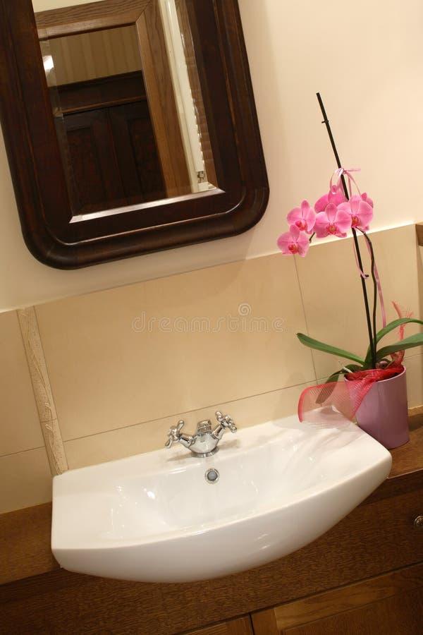 Download Bassin et orchidée image stock. Image du flore, bathroom - 4350279