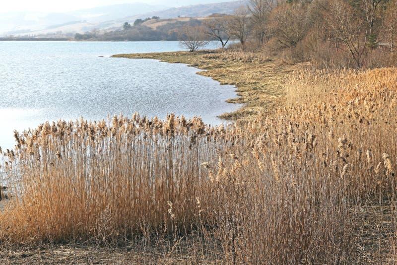 Bassin Liptovska Mara, Slovaquie de l'eau photos stock