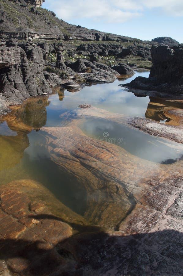 Bassin sur le dessus du plateau de Roraima images stock