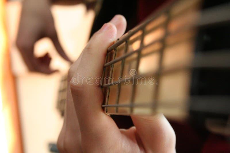 Bassist lizenzfreie stockfotos