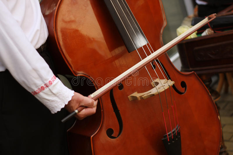 Bassist plays bass. Traditional Moravian cimbalom band bassist plays bass on wedding royalty free stock images