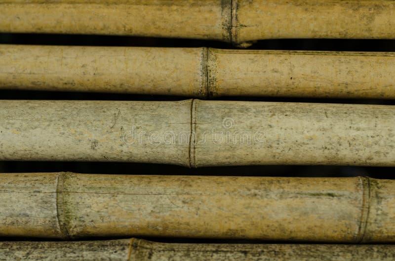 Bastón de bambú imágenes de archivo libres de regalías