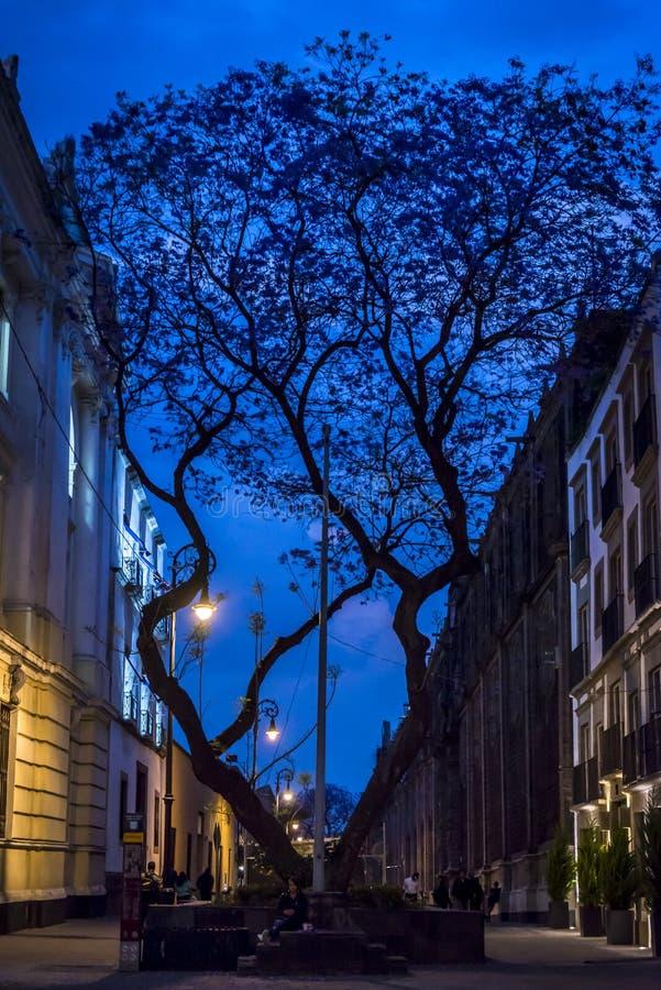 Bastante rua no crepúsculo em Cidade do México do centro, México foto de stock royalty free