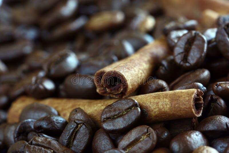 Bastone di cannella del primo piano e chicchi di caffè fotografia stock
