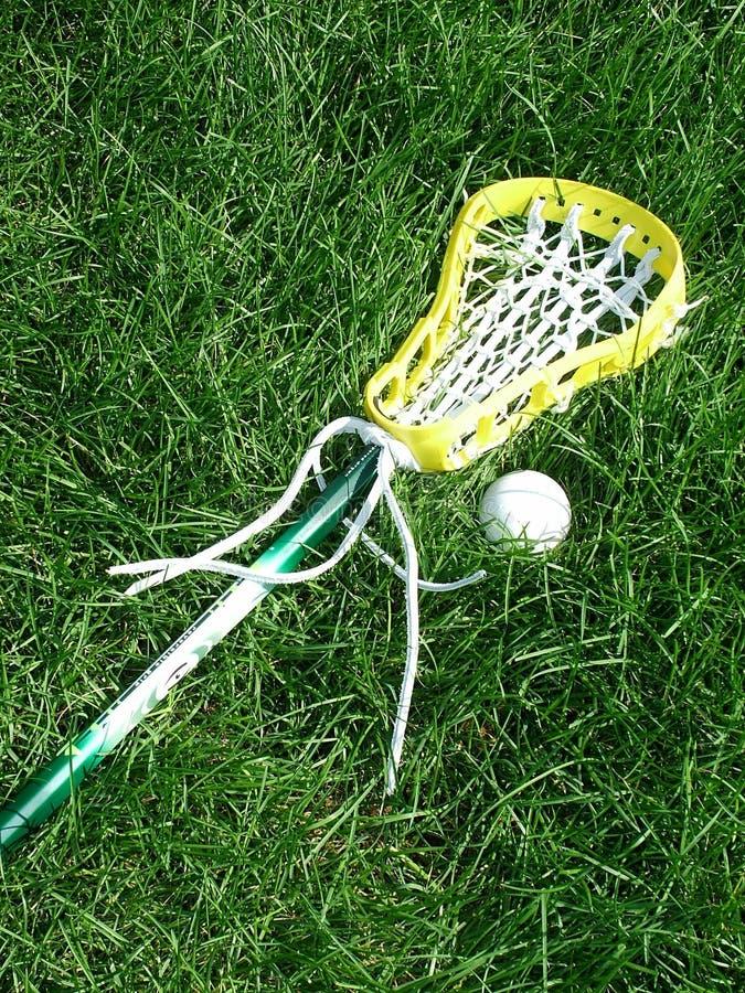 Bastone e sfera di Lacrosse fotografia stock libera da diritti