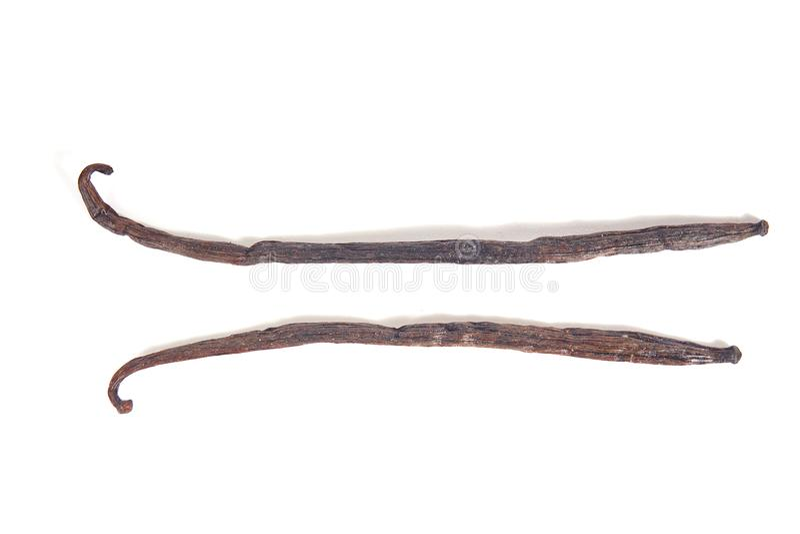 Bastoni dei baccelli dei baccelli di vaniglia isolati su bianco immagini stock libere da diritti