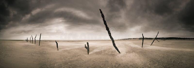 Bastoni Del Mozambico Fotografia Stock Libera da Diritti