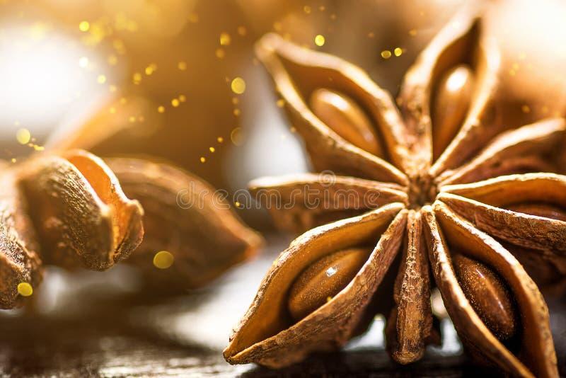 Bastoni di cannella degli ingredienti di cottura di Natale Anise Star Cloves Cardamom su fondo di legno Luci dorate scintillanti immagini stock