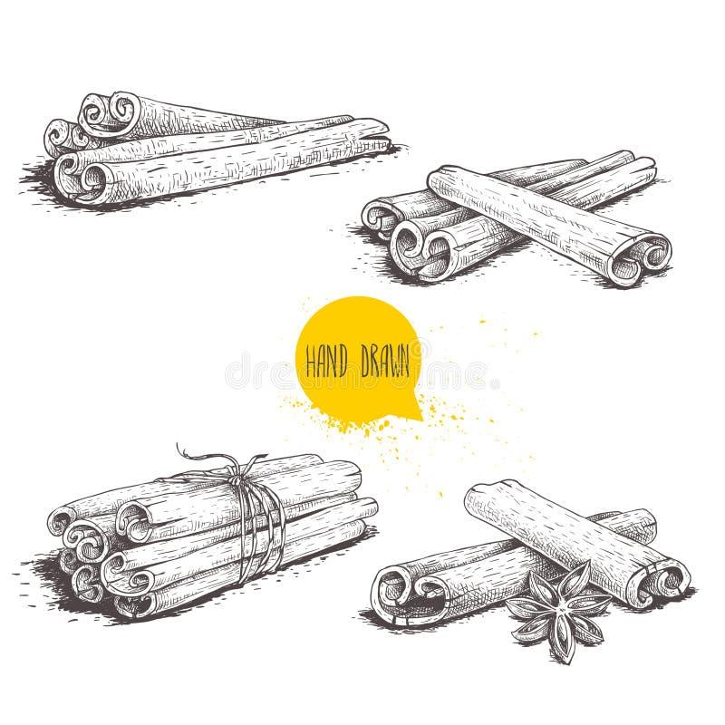 Bastoni di cannella disegnati a mano di stile di schizzo messi Legato con cordicella, con anice stellato ed i mazzi Isolato su pr illustrazione di stock