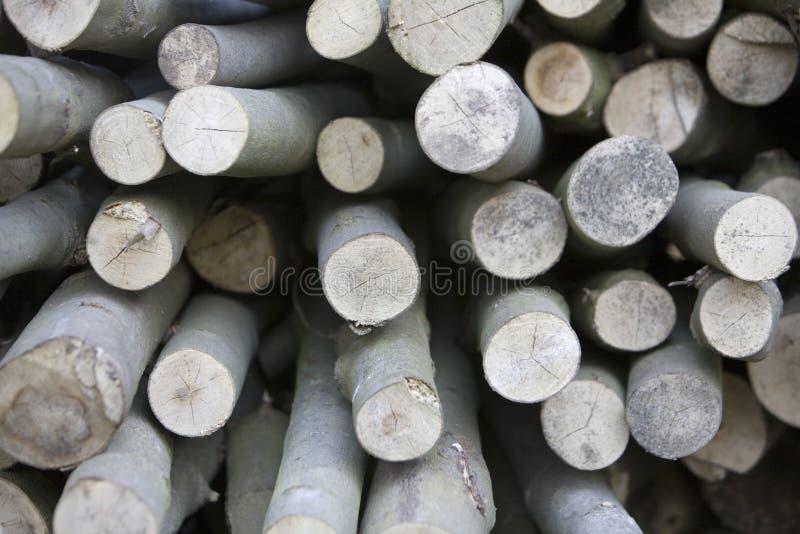 Bastoni di legno fotografia stock libera da diritti