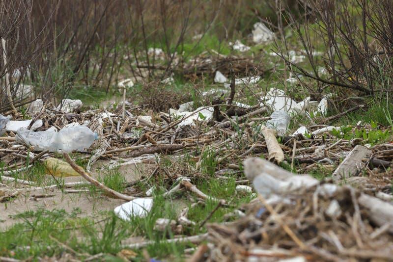 Basura en la contaminación del bosque del bosque por el plástico Problema ambiental Concepto de la ecolog?a fotos de archivo libres de regalías