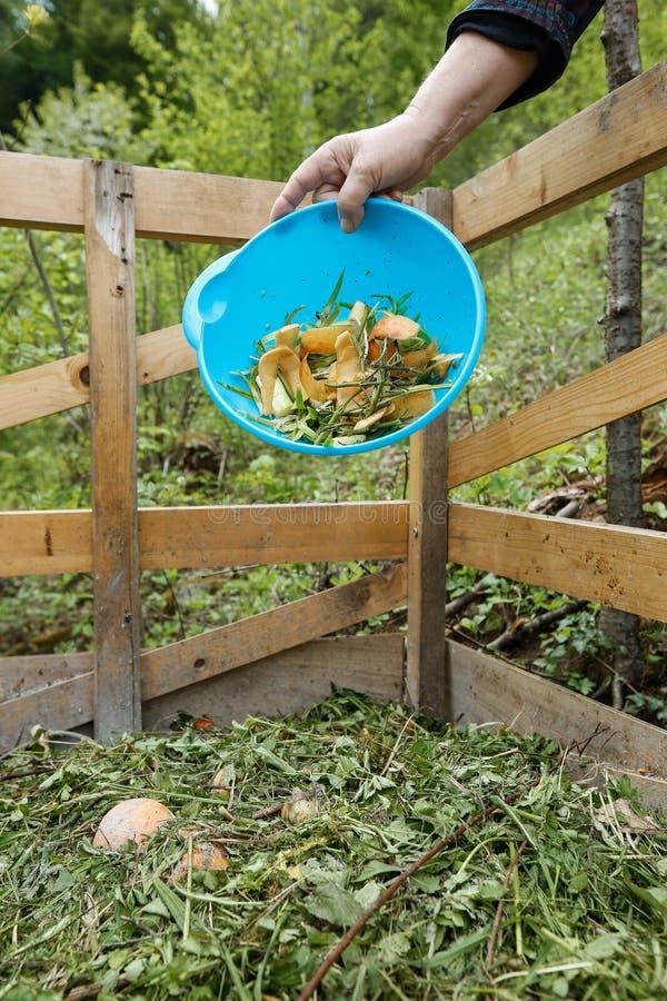 Basura orgánica de la cocina que es lanzada en un estiércol vegetal imagenes de archivo