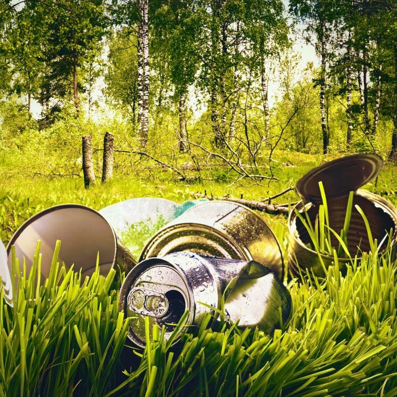 Basura y basura contaminadas bosque imagenes de archivo