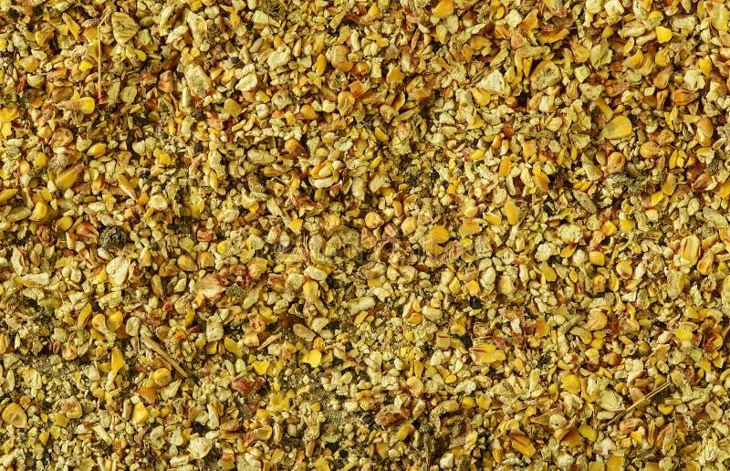 Basura y desperdicio del maíz Maíz indio primer Fondo La imagen macra se puede utilizar como fondo imagenes de archivo