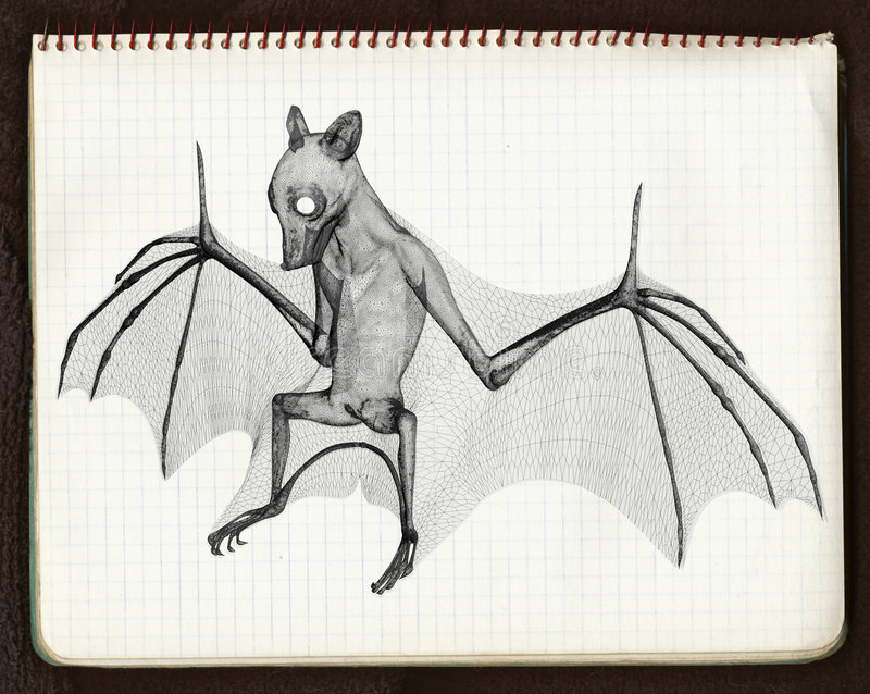 The bat 4, 3d sketch. Mixed media picture, 3d render and scan of paper sheet vector illustration