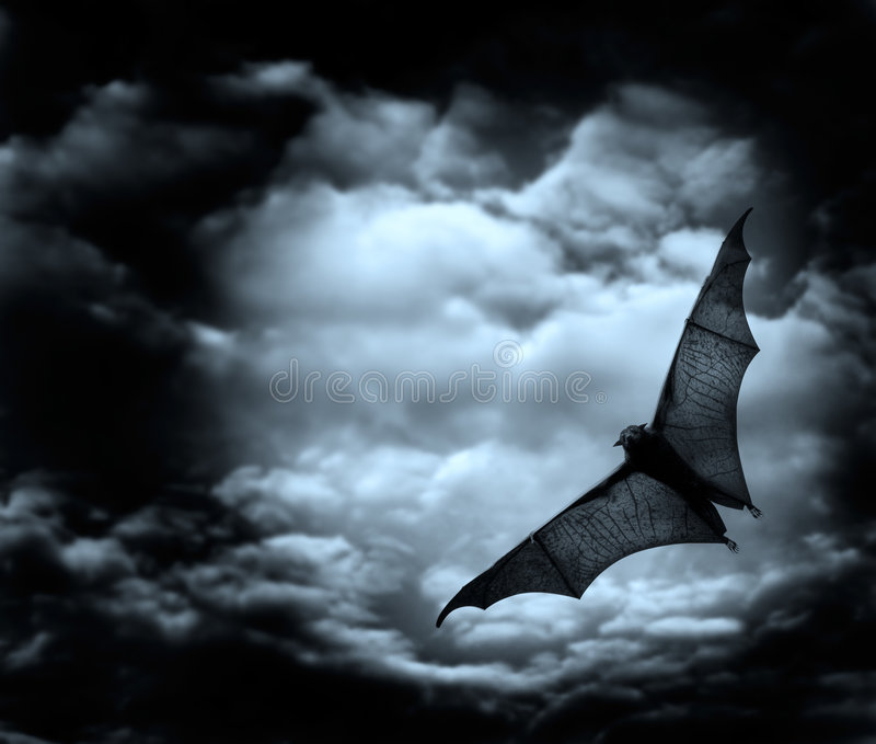 Download Bat flying in the dark sky stock illustration. Illustration of moonlight - 4629696