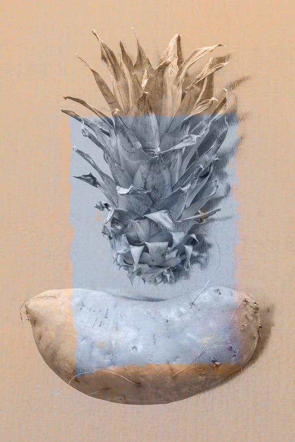 Bataat met vergeten ananaskroon royalty-vrije stock afbeeldingen