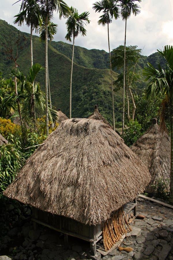 batad小屋ifugao菲律宾米大阳台 图库摄影
