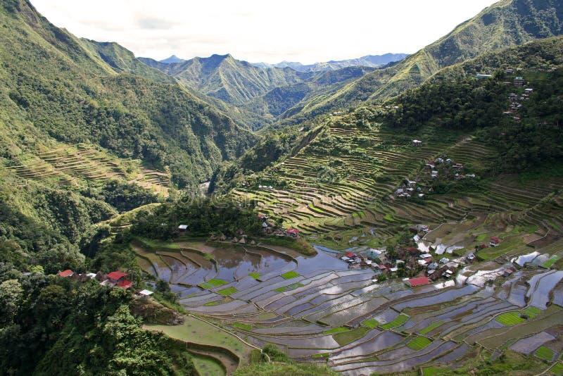 batad πεζούλια ρυζιού των Φιλιππινών ifugao στοκ εικόνα με δικαίωμα ελεύθερης χρήσης
