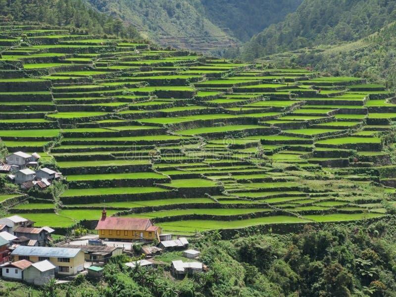 Batad Dorf stockbild