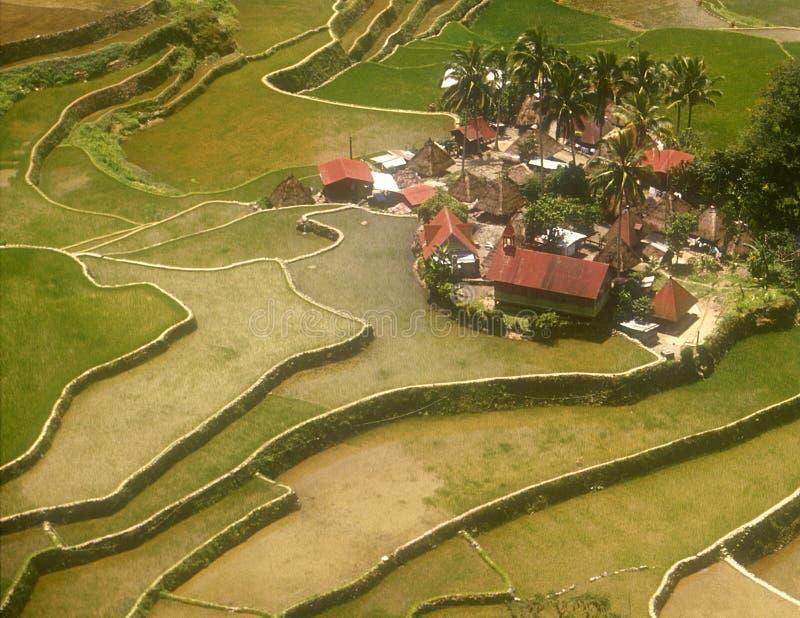 Batad Philippinen lizenzfreies stockfoto