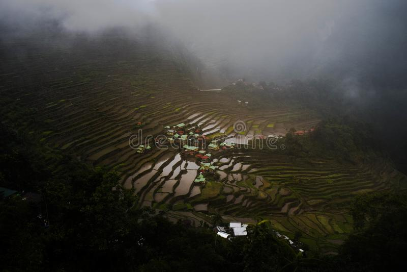 Batad-Reisterrassen an einem bewölkten Tag lizenzfreie stockbilder