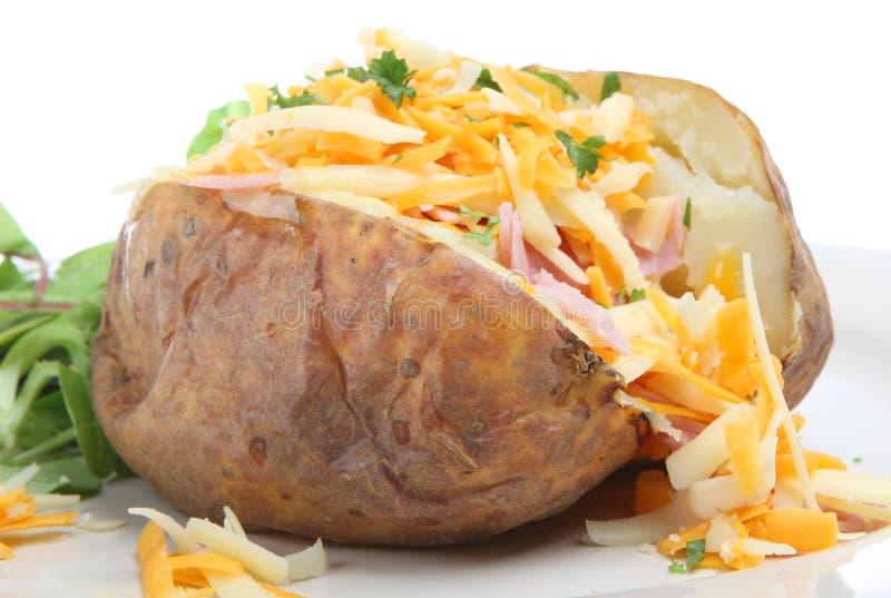 Batata cozida com queijo & presunto imagens de stock