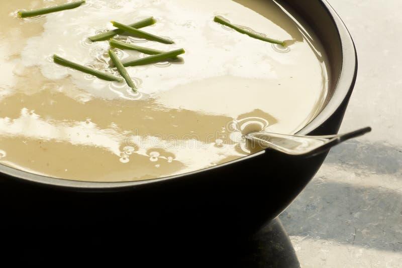 Batata de Vichyssoise e sopa do alho-porro fotografia de stock