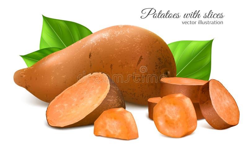 Batata doce com fatias e folhas ilustração royalty free