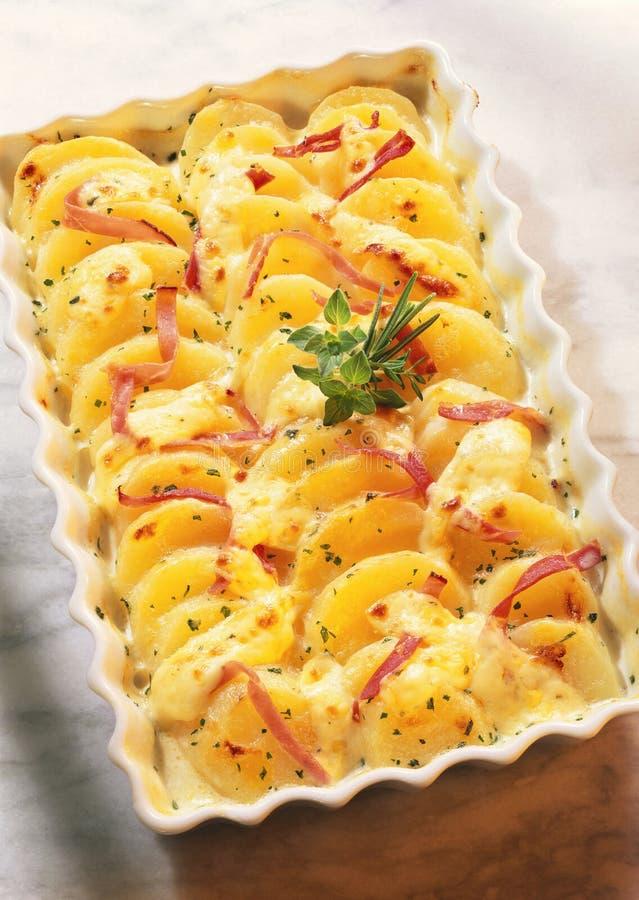 A batata e o queijo cozem fotografia de stock
