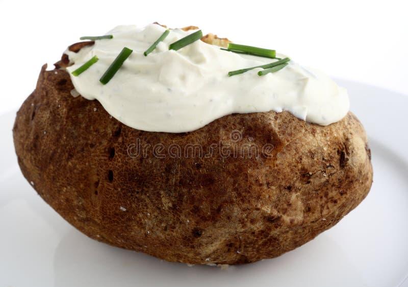 Batata e queijo de creme cozidos imagem de stock royalty free
