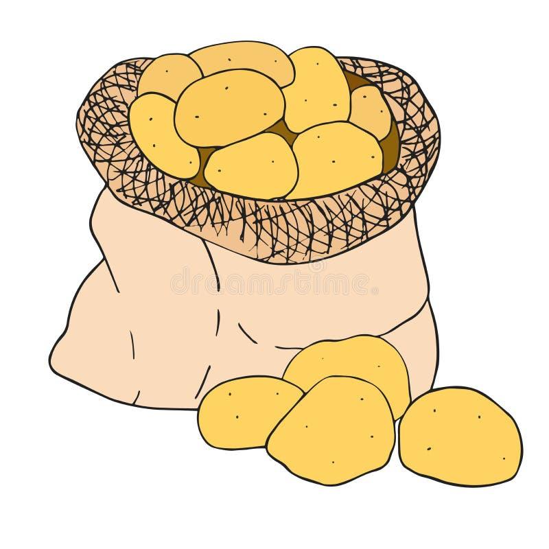 Batata em um saco da lona Esboço tirado mão do vetor Ilustração do clipart para o festival da colheita ilustração do vetor