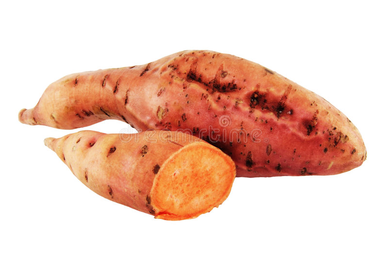 Batata. Ipomaea Batatos Lam. royalty free stock photo